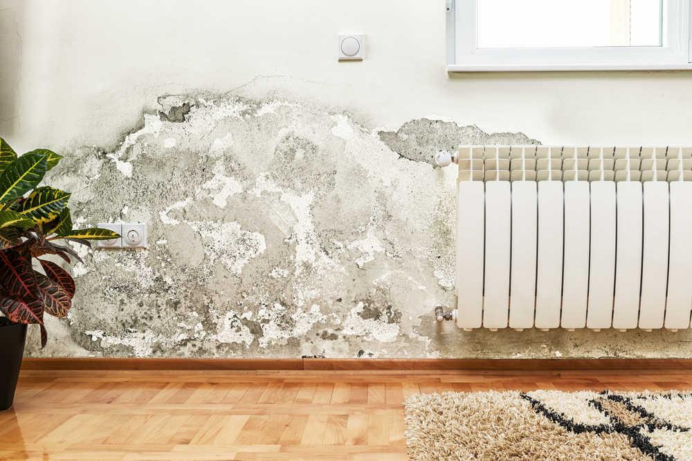 Consejos para mantener tu casa en forma